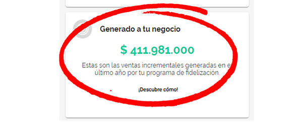 ingresos_programa_de_fidelizacion_de_clientes copia (1)
